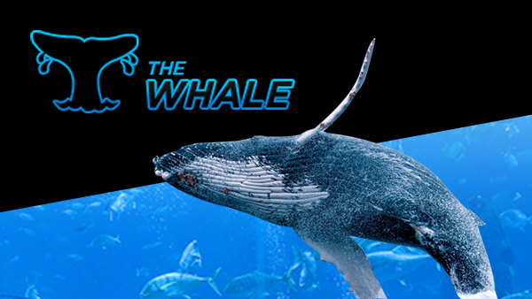 888-poker-the-whale